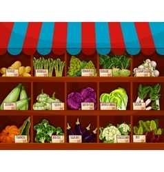 Food market store with vegetable showcase vector