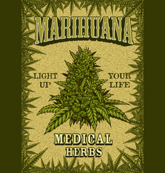 Marihuana colour poster vector