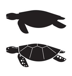 Sea turtle outline icon or logo vector