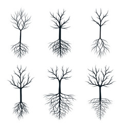 Trees with roots outline plants vector