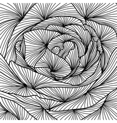 decorative rose close up vector image vector image
