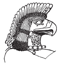 Assyrian eagle-head is natural pattern in this vector