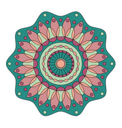 color floral mandala vector image