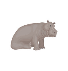 Flat design of sitting adorable hippo vector