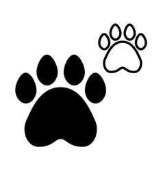 Paws pet on white background vector