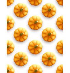 pumpkin seamless pattern modern autumn background vector image