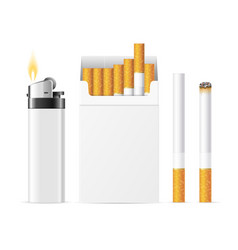 realistic template blank white cigarette pack with vector image vector image