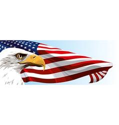 USA EAGLE FLAG vector image