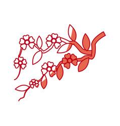 japanese tree sakura branch natural shadow vector image