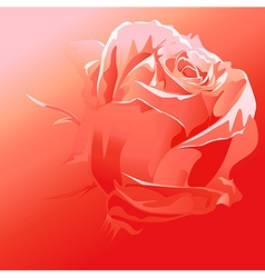 Red rose - abstract background vector