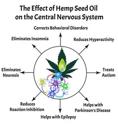 The effect hemp seed oil on central nervous vector