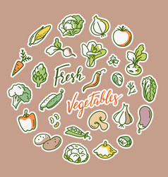vegetable with a place for vector image