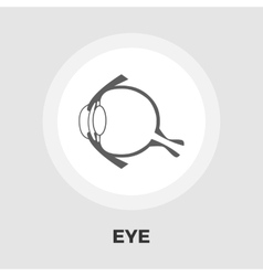 Anatomy eye flat icon vector image