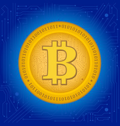 bitcoin crypto coin vector image