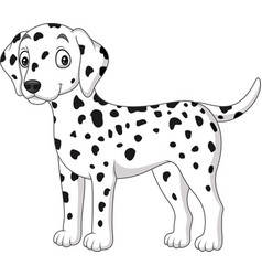 cartoon cute dalmatian dog isolated on white backg vector image