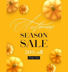design banner autumn sale fall poster design vector image