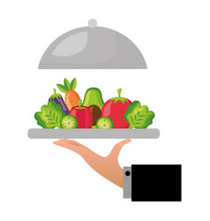 Hand holding vegetables on dish healthy food vector