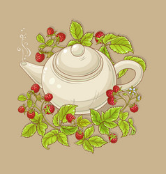 raspberry tea vector image
