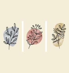 set abstract botanical wall art abstract vector image