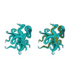 set of sketch cartoon octopus tentacles vector image