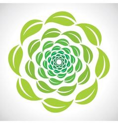 green leaf swirl design vector image vector image
