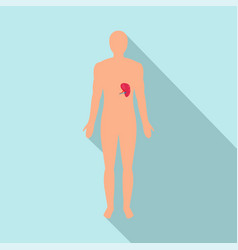 front view of human spleen icon flat style vector image