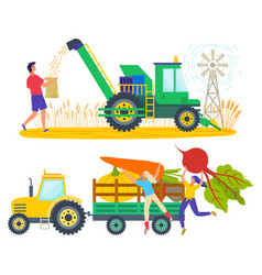 harvesting people on field tractor with vegetables vector image