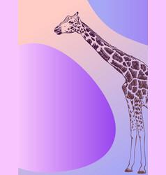 minimalist banner with giraffe sketch vector image