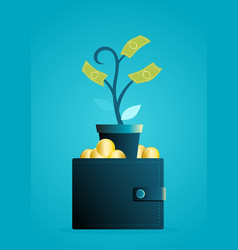 money tree grows out wallet vector image