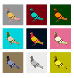 Set of in flat style dove vector