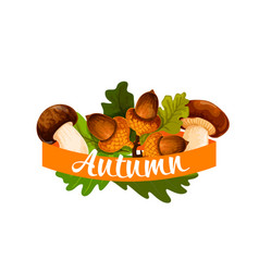 autumn harvest and leaf fall poster vector image vector image