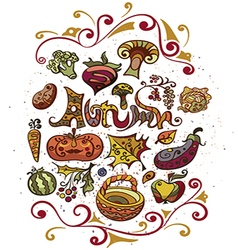 Autumn set of vegetables and fruits vector