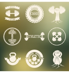 Cross Training and GYM logo white vector image