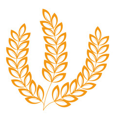 Spikelets isolated icon wheat or barley heraldic vector