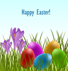 Easter card with crocus and eggs vector