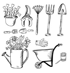 doodle garden tools pot and watering can vector image vector image