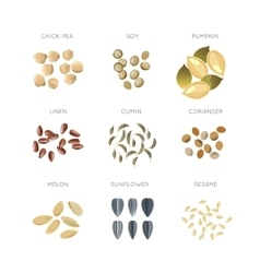 Cereal grains flat icons set vector