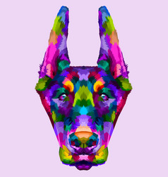 colorful doberman head vector image