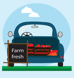fast delivery of fresh vegetables eco food vector image