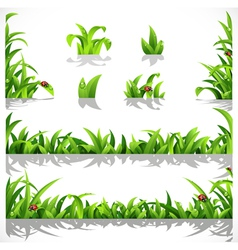 Green lush grass with dew and ladybirds vector image