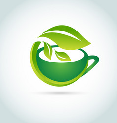 green tea leaf organic icon logo vector image