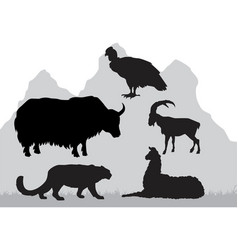 Mountain area animals vector
