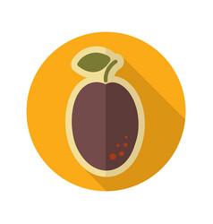Plum flat icon fruit vector