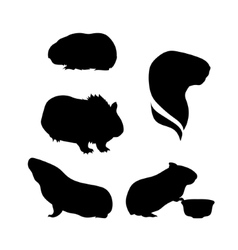 Silhouettes of a guinea pig vector