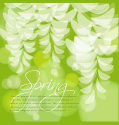 spring wedding invitation acacia flowers vector image