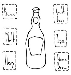 beer bottle hand drawn vector image