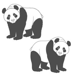 Black and white image of panda isolated objects vector