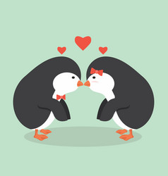 cute penguin animal couple vector image