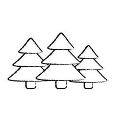 pine tree icon image vector image