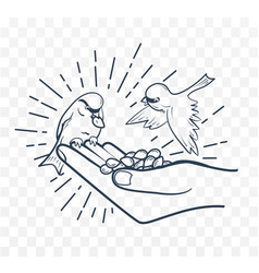 linear silhouette feeding birds from seeds hand vector image
